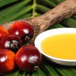 Por qué el aceite de palma es tan malo para la salud