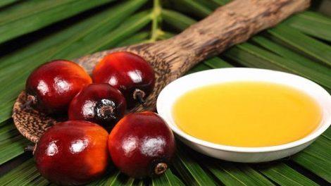 El aceite de palma consumido en exceso es muy malo para la salud