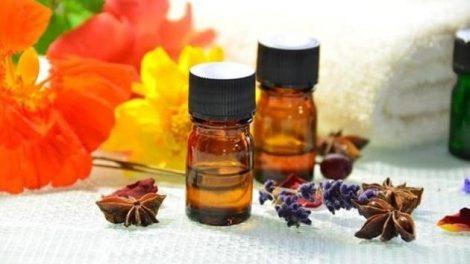 ¿Cuáles son los mejores aceites para la piel?