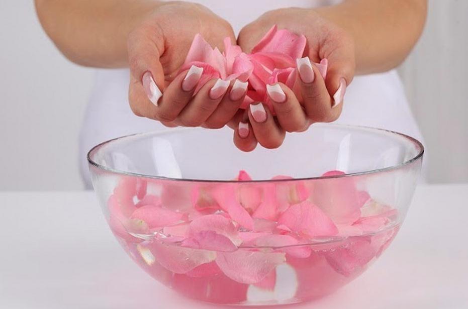 C mo hacer agua de rosas - Como secar una rosa ...