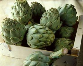 alcachofa-beneficios-propiedades