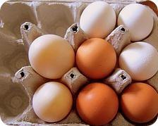 alergia-huevo
