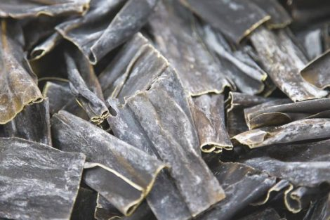 Alga kombu: qué es, beneficios únicos y usos en la cocina