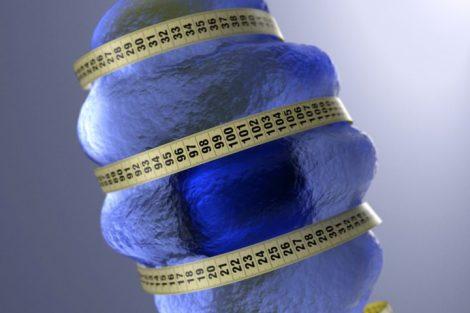 Qué es la dieta hipocalórica y beneficios contra el envejecimiento