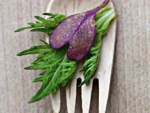 Alimentos cardiosaludables: los mejores para tu corazón
