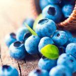 Arándanos: propiedades antioxidantes