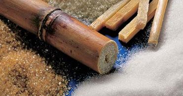El azúcar moreno y azúcar blanco: ¿cuál engorda más?
