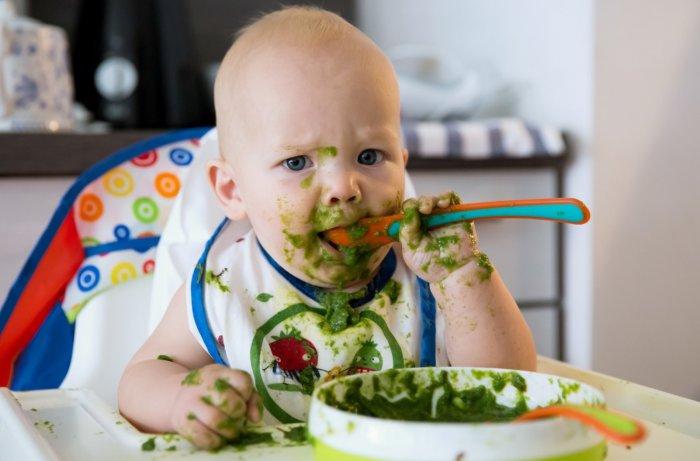 Bebes vegetarianos