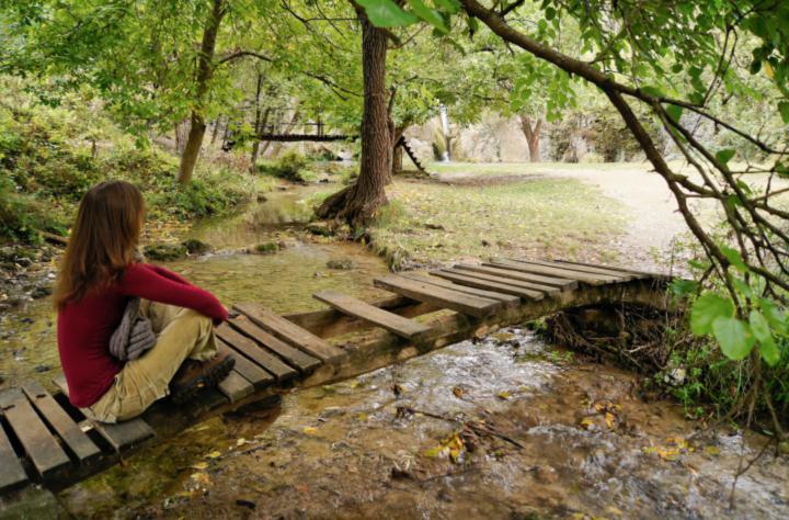 Cualidades que te aporta el baño de bosque