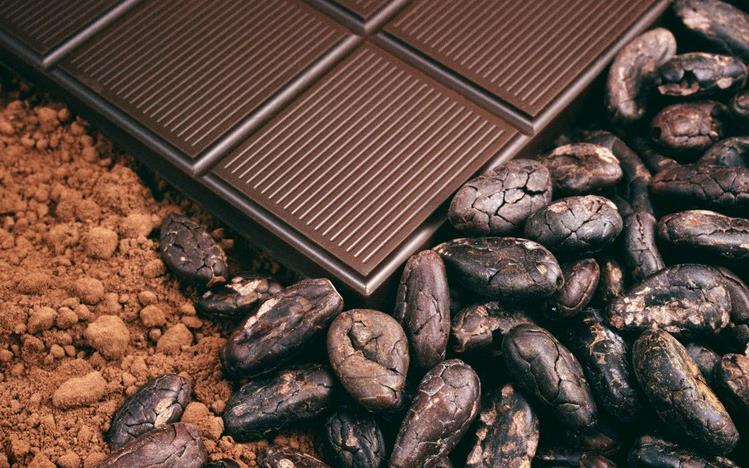 Los beneficios del cacao más importantes