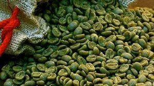 Información sobre los beneficios del cafe verde