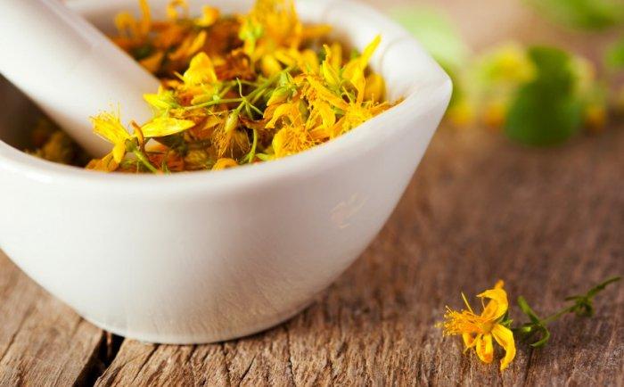 Beneficios medicinales de la hierba de San Juan
