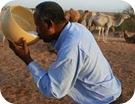beneficios-leche-de-camella