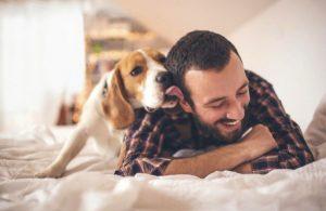 Perros en casa ¡8 beneficios de tener canes!