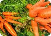 ¿Qué es el betacaroteno?