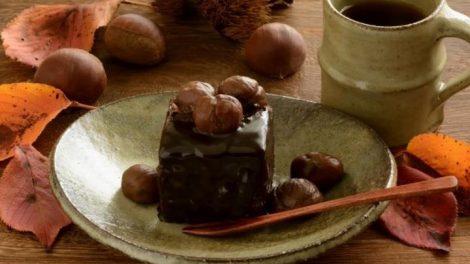 Recetas de bizcochos de castaña y chocolate