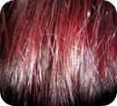 cabello-sano