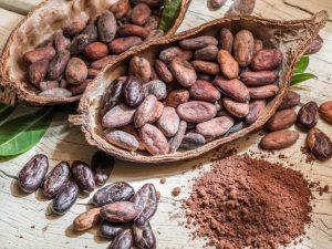 6 beneficios del cacao, propiedades y contraindicaciones
