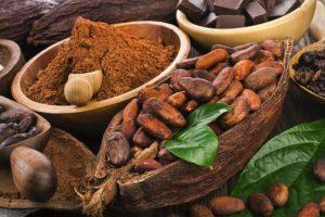 Cacao ideal para quemar grasas