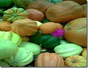 Calabaza, un alimento propio del otoño