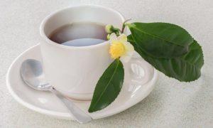 Llénate de salud y energía con el té