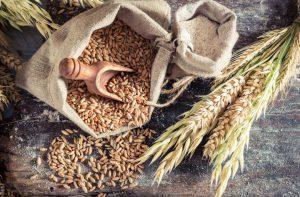 Centeno: propiedades y beneficios únicos de un cereal completo