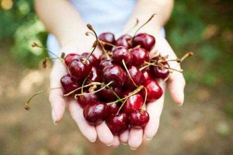 Cerezas: propiedades antioxidantes y beneficios únicos