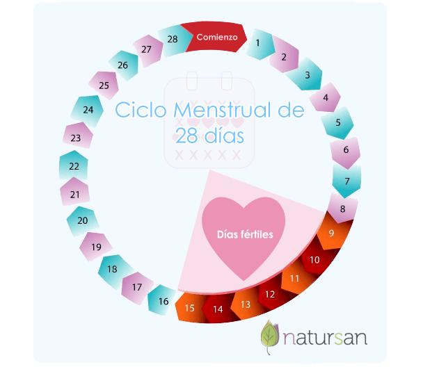 Calendario de ciclo fértil