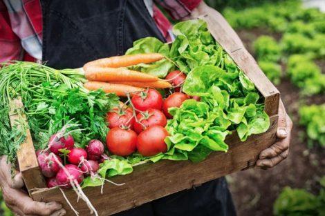 7 consejos para comer ecológico sin gastar mucho dinero