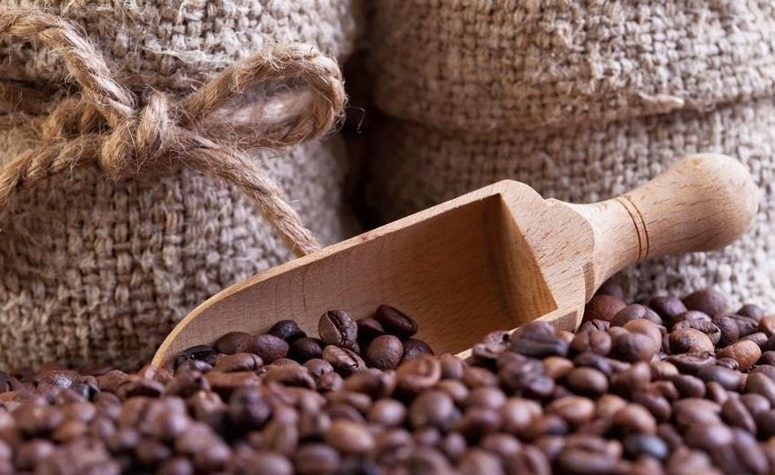conservacion-cafe