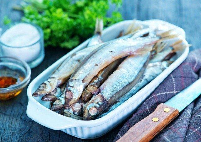 conservacion-pescado