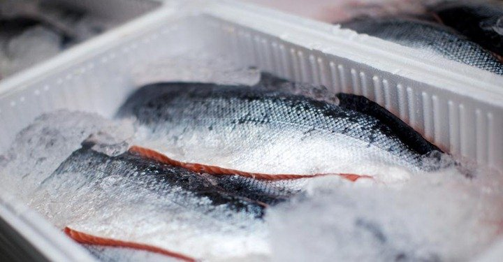 conservar-pescado