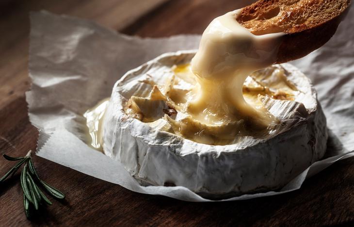 crema-queso-camembert