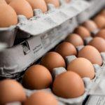 Crisis de los huevos contaminados: todo lo que hay que saber