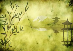¿Conoces el cuento del bambú japonés?