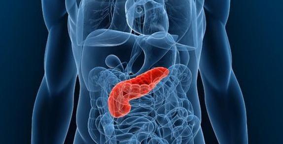 Cuidar el páncreas