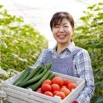 ¿Por qué los japoneses disfrutan de una vida tan longeva?