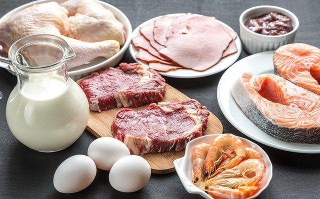 dietas-proteinas