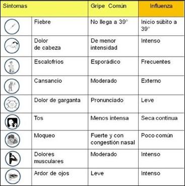 diferencias-gripe_a-gripe