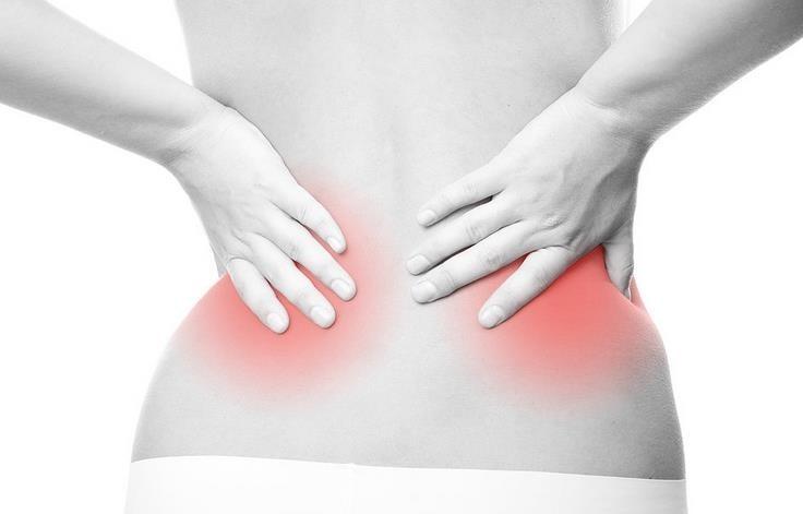 Resultado de imagen de riñones espalda