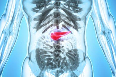 Las principales enfermedades del páncreas y sus síntomas