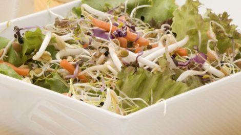 Cómo hacer ensalada de soja germinada