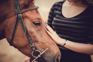 La equinoterapia: beneficios de la terapia con caballos y contraindicaciones