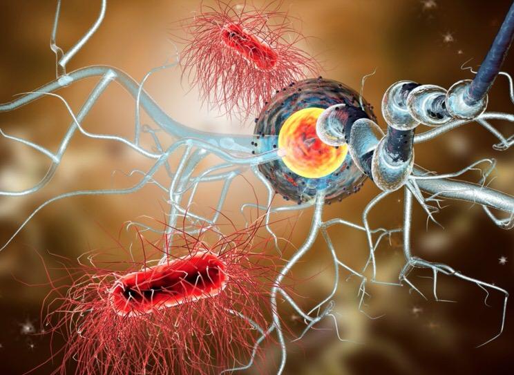 Ocrevus como tratamiento para la esclerosis múltiple