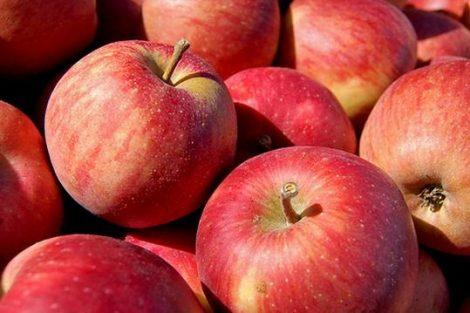 Funciones de la fibra soluble y alimentos ricos