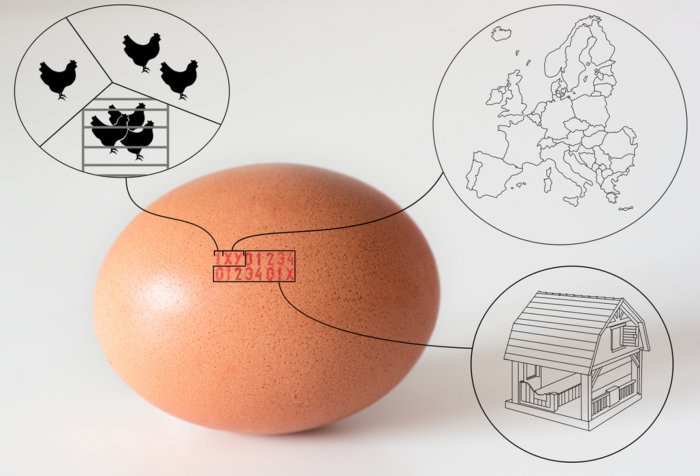 Fipronil y huevos contaminados