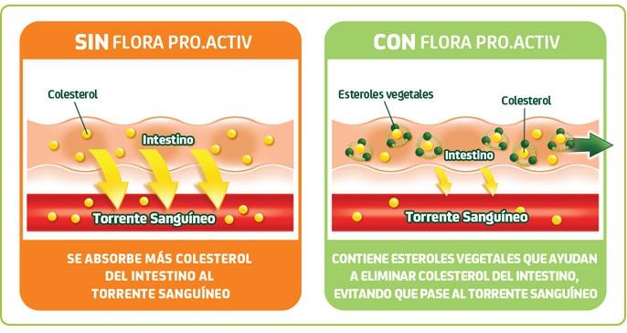 Reto Flora Pro.Activ 2013