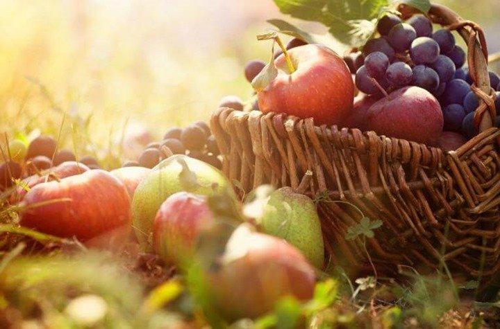 frutas-de-otono