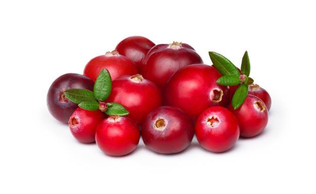 frutos-gayuba