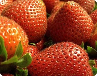 Frutos rojos: beneficios y propiedades